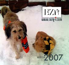 Best of 2007 CD cover