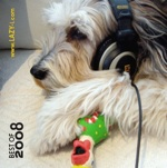 Lazy-i Best of 2008 CD cover