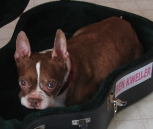 Coco Benck sits in a guitar case.